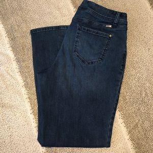 INC Jeans - Straight Leg - Curvy Fit